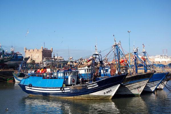 Für Essasouira ist der Fischereihafen von grosser Bedeutung