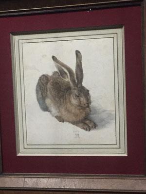 Mit Besuch der Albrecht Dürer-Ausstellung: sein berühmter Hase,  NICHT fotografiert - gezeichnet!