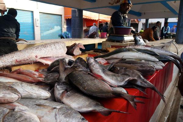 Da ist uns des Fischers Angebot eher vertraut