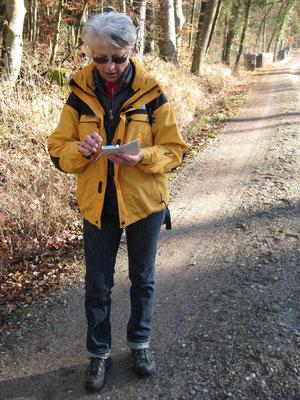 Kartenstudium auf dem iPhone