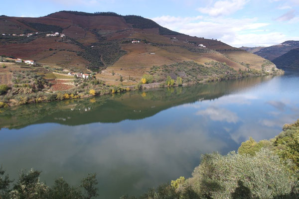 Weiter geht die Fahrt dem Douro entlang