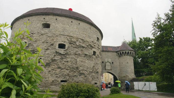 Tallinn ist auch mit Regenschirm bezaubernd