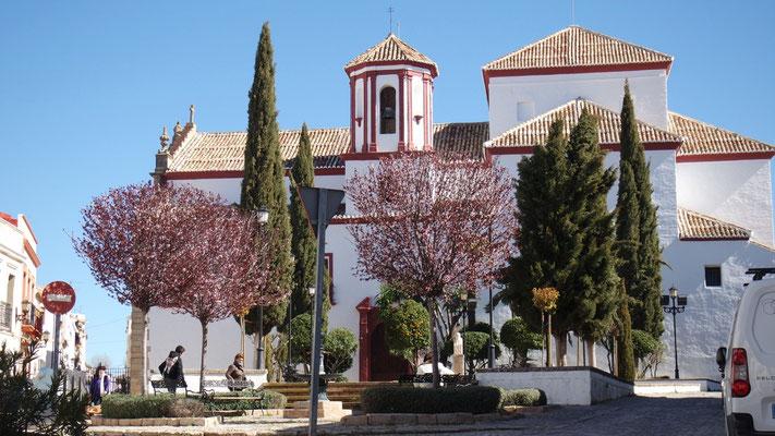 Frühling wird's bei der Kirche in Ronda