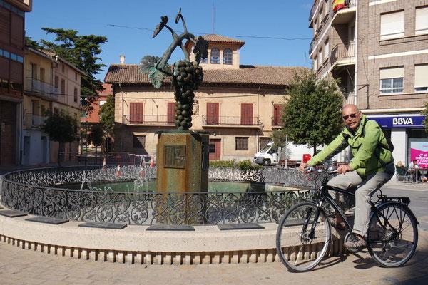Radausflug von Navarrete nach Fuenmayor