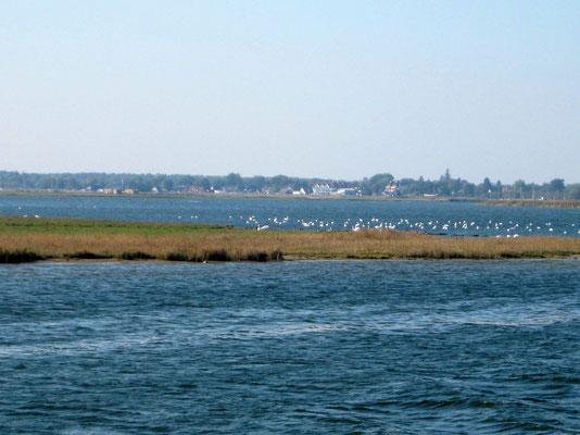 Veloverlad, mit dem Schiff durch das Boddengewässer nach Barth