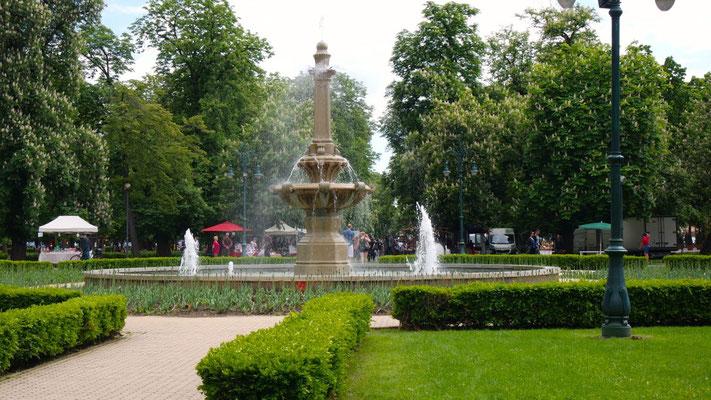 Im Stadtpark Bischofgarten mit so vieeeel Grün kommt Freude auf