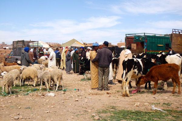 Grosser Viehhandel im Souk