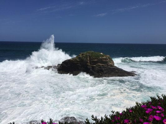 Die Wellen schlagen,