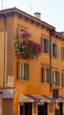 Belli fiori - ich bin auch ein Blumentopf, meint der kleine Balkon in Verona