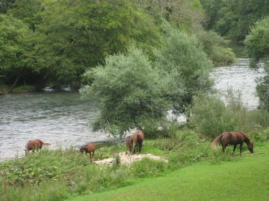 Stimmung am Doubs - unterwegs nach Soubey