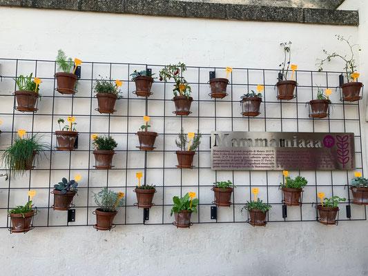 Matera ist Kulturhauptstadt Europas 2019