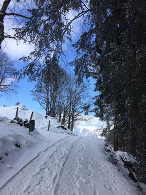 durch Braunwalds Bergwelt