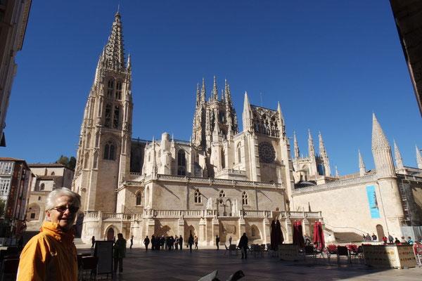 Die vielgerühmte Kathedrale
