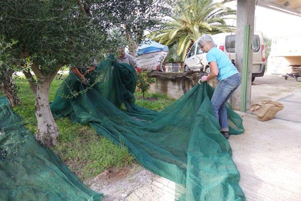 """Die angenehme """"Baustelle"""" direkt vor dem Haus in Agio Ioannis"""