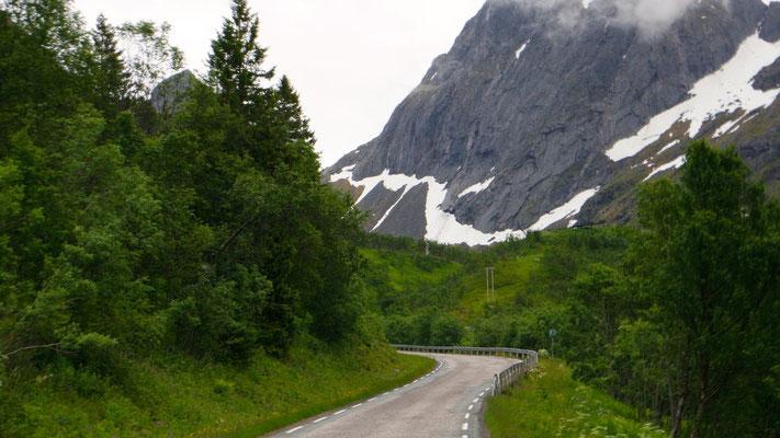 Eines der vielen Norwegen-Gesichter auf der Insel Senia