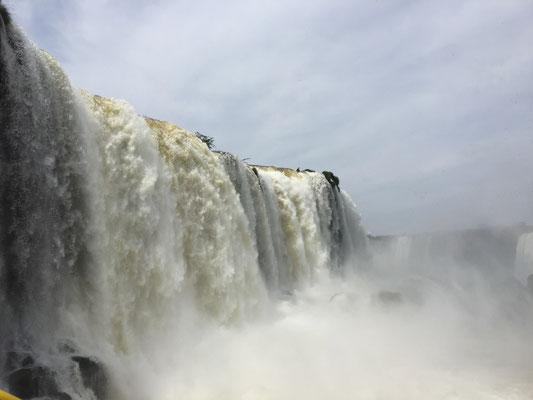 Die gigantischen Iguazu Wasserfälle in Argentinien/Brasilien