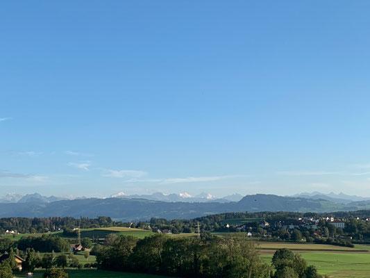 Zürcher-Oberland-Ausblick in die Glarner Alpen