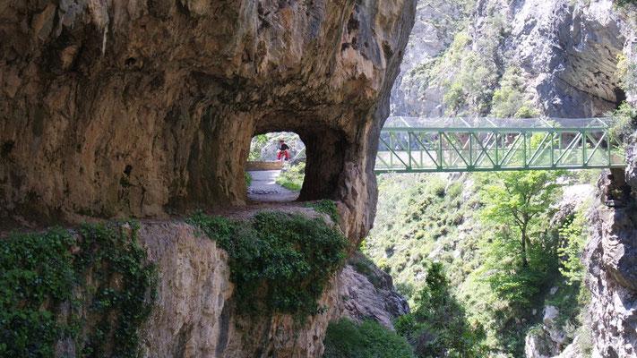 und Tunnels sorgen für Staunen