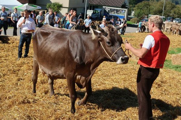 Doch auch die Kuh-Damen sind da ganz unterschiedlich!!!