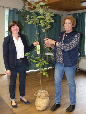 Die Kreisvorsitzende Petra Fahje überreicht einen Apfelbaum an Elisabeth Menz