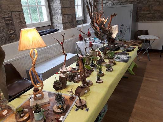 les créations lumineuses en bois flotté de florent, à lons - foire aux plantes de lons le saunier - association llb