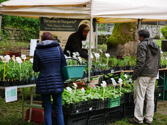 rémy et les herbes de marguerite, installé à brery - foire aux plantes de lons le saunier - association llb