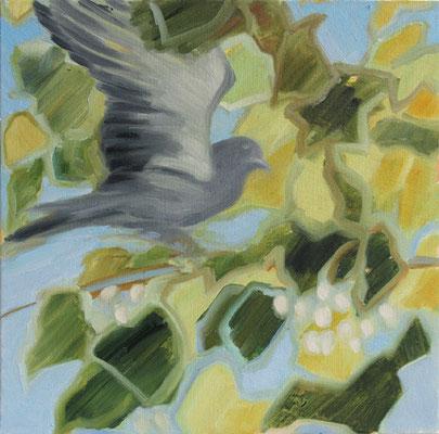 Taube in Maulbeer, Ölstudie auf Malkarton