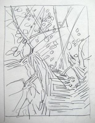 Entwurf für Maulbeerbaum, Bleistift auf Papier