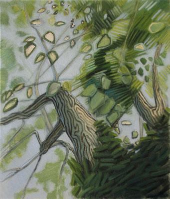 Maulbeerbaum Ölstudie auf Leinwand