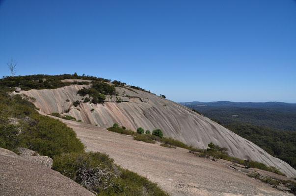 """So kahl (""""bald"""") erschien uns der Felsen zwar gar nicht."""