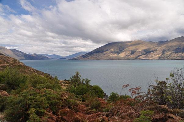 Aussicht auf den Lake Wanaka