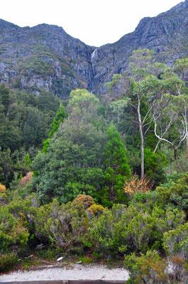 Wasserfall (keine Ahnung was der für einen Namen hat...) bei den Cradle Mountains