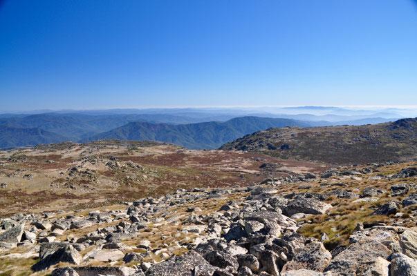 Aussicht vom höchsten Berg Australiens - Mount Kocziusko (2228 m.ü.M.)