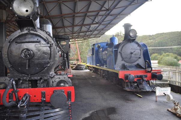 Bayer-Peacock- und Dubbs-Lokomotiven