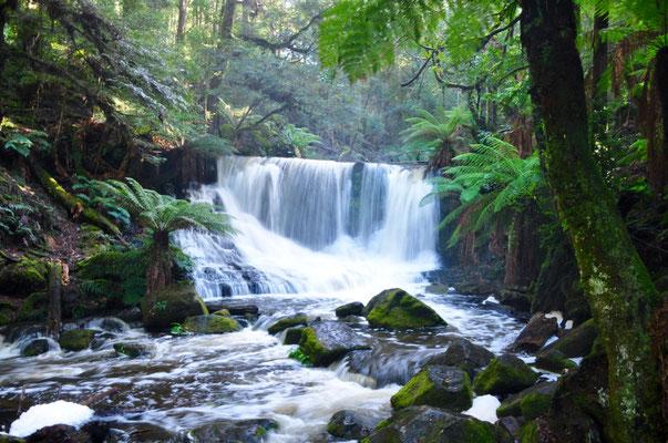 Weiterer Wasserfall im Mount Field National Park