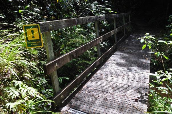 Wir sind - wie auf dem Schild verlangt - selbstverständlich schön einer nach dem anderen über die Brücke gelaufen. Sicherheit geht vor!
