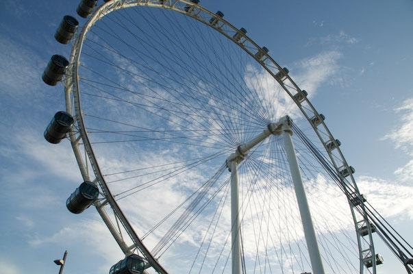 "Riesenrad ""Singapur Flyer"""