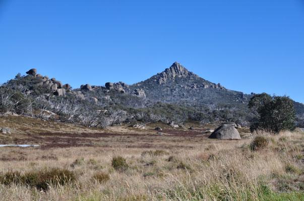 """Hochebene des Mount Buffalo mit dem Gipfel """"The Horn"""""""