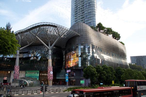 Einkaufszentrum in der Orchid Road
