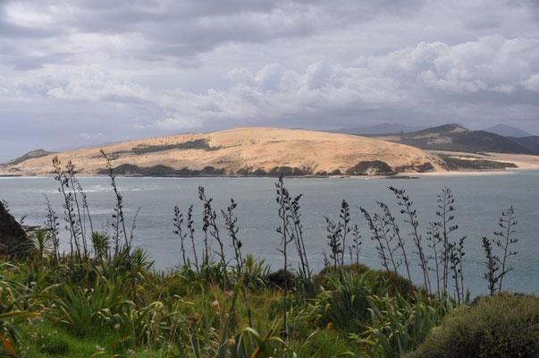 Weitere Dünenlandschaft: Kakahoroa am Nordufer von Hokianga Harbour