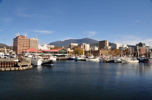Hafenidylle in Hobart - im Hintergrund Mount Wellington (1'271 m)