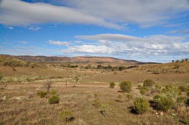 Landschaft des Flinders Ranges Nationalpark