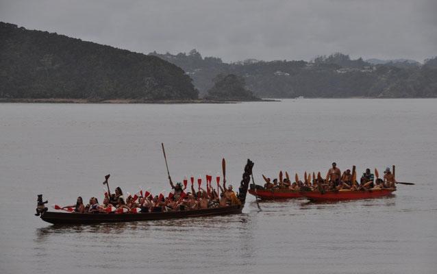 Iwi (Maori) unterwegs mit ihren Wakas (Kanu)