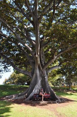 """""""Am Baum des Lebens wachsen viele Augenblicke. Jeder einzelnde davon ist kostbar."""""""