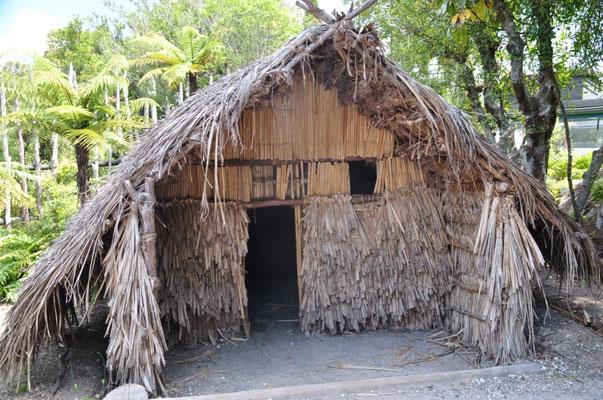 Te Puia Institute - nachgestelltes Maori-Wehrdorf