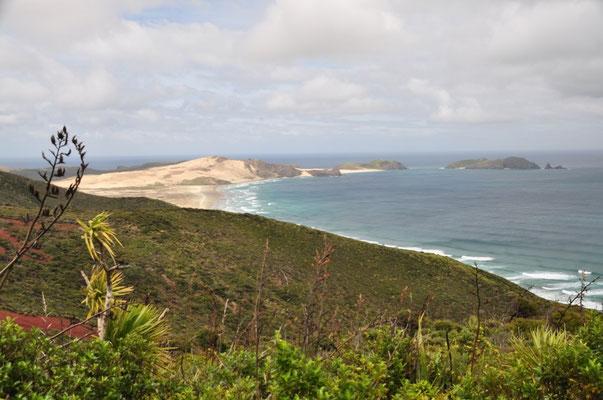 Aussicht vom Cape Reinga