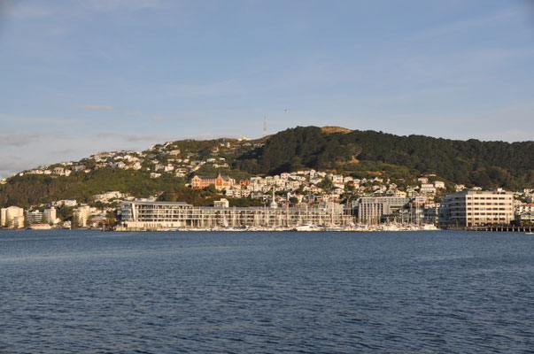 Blick über die Oriental Bay zum Vorort Roseneath