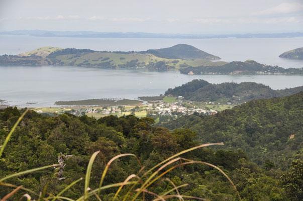 Blick zurück auf Coromandel Stadt