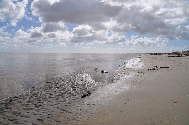 Der Strand beim Campingplatz in Collingwood - auch hier hat der gestrige Sturm keine Spuren hinterlassen.