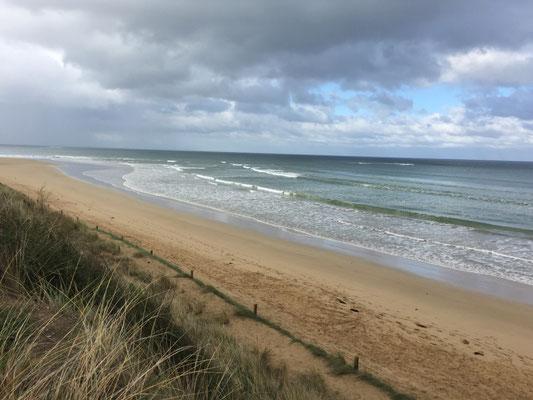 Am Strand von Anglesea - Wegen des trüben Wetters und der schlechten Stimmung gibst keine weiteren Fotos...